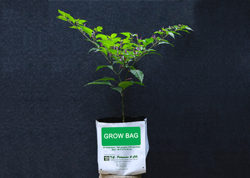 high quality Grow bag Agro bags Planting bag